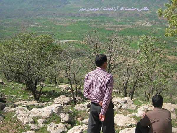 پیامدهای تخریب درختان بلوط در اکوسیستم های زراعی شهرستان کوهدشت