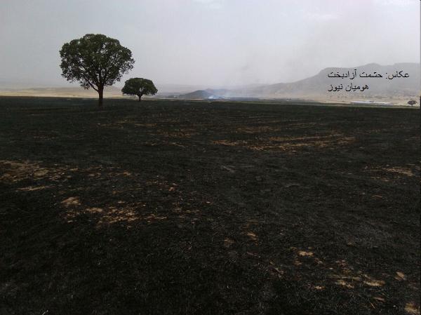 آتش سوزی کوهدشت مهار شد / کشاورزان به خاک سیاه نشستند